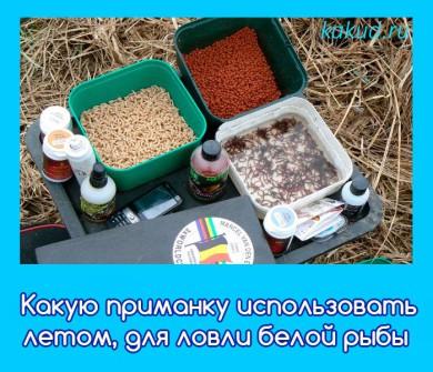 производство прикормка для рыб