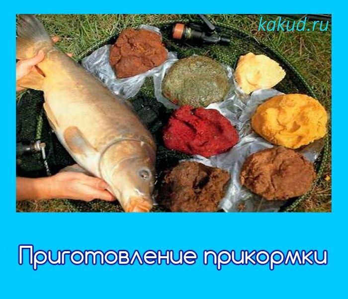 приготовление приманок для ловли рыбы