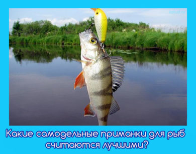 самодельная приманка на рыбу
