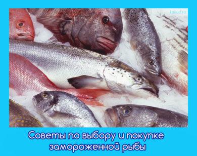 рыба по выгодной цене