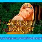 Слот Секреты Леса (Forest Secret)