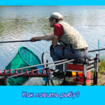 Как ловить рыбу?
