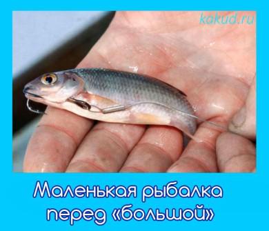 Malenkaja rybalka pered bolshoj