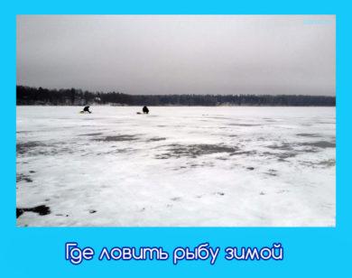 зимой как ловить рыбу