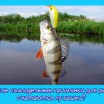 Какие самодельные приманки для рыб считаются лучшими?