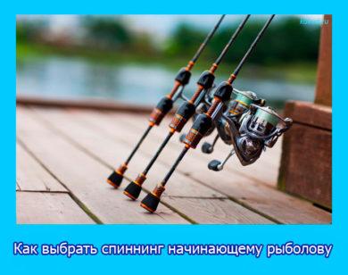 спиннинг начинающему рыболову