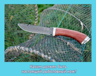 Каким должен быть настоящий рыболовный нож?